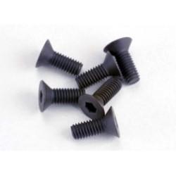 Surub, 3x8mm cap zenc matritat (6) (cheie Imbus hex)